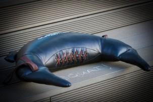 Hoe heet dit ding eigenlijk? Foto door Evert Buitendijk