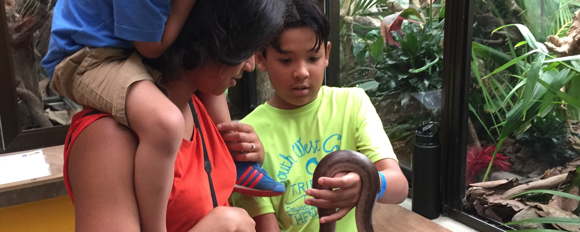Super cool stuff your kids love to do in Costa Rica - petting a snake