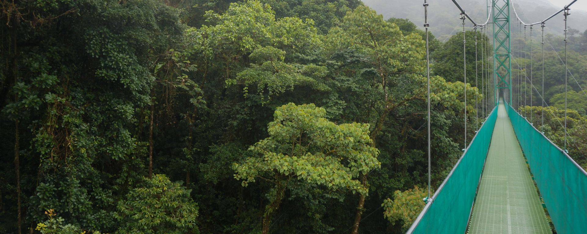 Super cool stuff your kids love to do in Costa Rica - walking the hanging bridges
